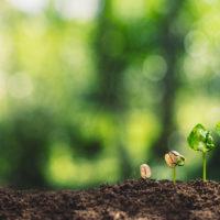 Table ronde– Agriculture et urbanisme: comment concilier habiter et cultiver?