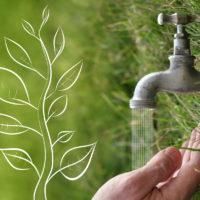 Eau Responsabilité Naturopathie